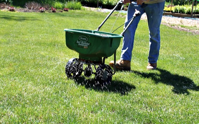 Fall Lawn Fertilizer FAQ